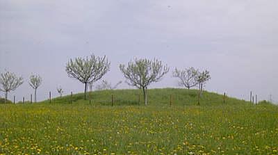 Fürstengrab bei  Thomm